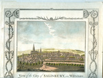 View of the City of Salisbury, in Wiltshire