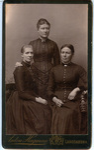 Swedish Family Photograph