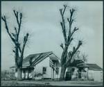 Farm House Photograph
