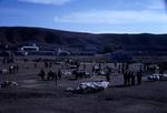 B41.038 Cerikli Sheep Market by Denis Baly