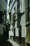 B49.102 Seville Judaria