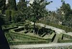B49.254 Gardens