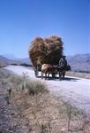 B41.071 Towing Hay