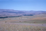 B41.084 Pastoral Farmland by Denis Baly