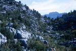 B42.100 Taurus Mountains