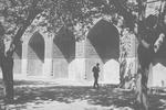 B02.073 Masjid-e-Shah (Shah Mosque) by Denis Baly