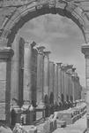 B04.063 Leptis Magna - Basilica by Denis Baly