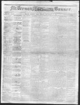Mount Vernon Democratic Banner November 20, 1868