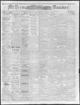 Mount Vernon Democratic Banner March 3, 1871