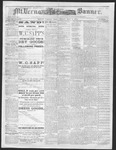 Mount Vernon Democratic Banner May 9, 1873