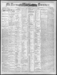Mount Vernon Democratic Banner August 6, 1875