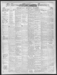 Mount Vernon Democratic Banner December 24, 1875