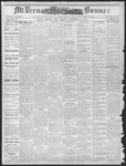 Mount Vernon Democratic Banner November 17, 1876