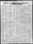 Mount Vernon Democratic Banner January 21, 1876