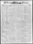 Mount Vernon Democratic Banner November 29, 1878