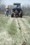 Tree Planting Furrow