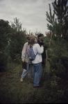 Measuring Pines KCES