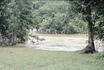 June Flood high water at Canoe Launch Site