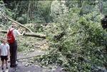 June Flood high water Trees over Gap Trail: Bob & Dwight Guth