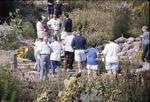 kces Hoot crowd around pond