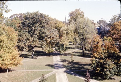 Middle Path from Top of Old Kenyon