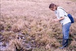Hydric Soil-KCES