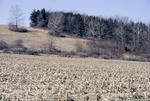 KCES Cornfields, Hill