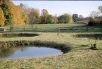 BFEC Fall Colors, Ponds