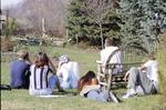 BFEC-Animal Behavior Class, Bird Feeding Study