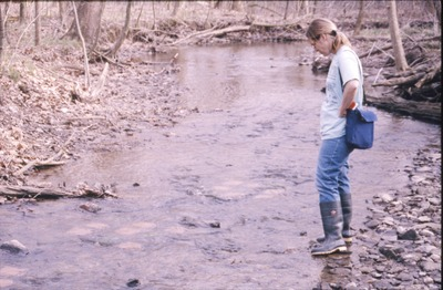 Wolf Run-Stream Colonization Expt. Site Pat