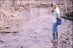 Wolf Run-Stream Colonization Expt. Site Pat