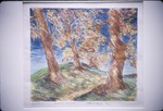 Watercolor Winner: Trees and Path KCES