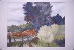 Watercolor Winner: Road, fense, trees