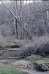 Woods edge, Wolf Run KCES
