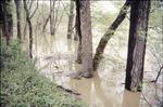 KCES Kokosing Flood
