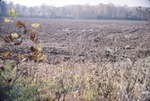KCES Field; Winter wheat plowing