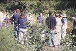 Harry Itagaki Butterfly Garden with visitors, Butterfly Program