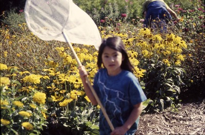 S. Itagaki with net, KCES Butterfly Program