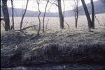 Gambier Road/Kokosing Field from Wolf Run KCES