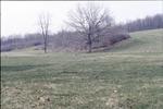 KCES-North Pasture low land