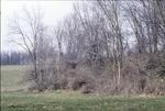KCES Pasture Woods-N. 229