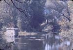 Autumn stream, Ohio
