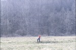 Pat-Wetland explore woods background