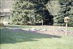 BFEC Melissa's Garden: stream and new feeder overview