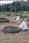 BFEC Organic Garden-Josh Ganz