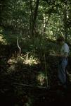BFEC Grazing study: Shana West T19 upper slope habitat