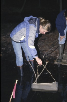 BFEC Student Research Vernal Pools