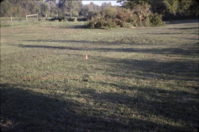 Pond area before construction