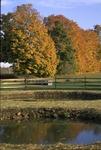 BFEC-Fall colors, ponds