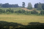KCES mowed hillside prarie bottoms from Garden